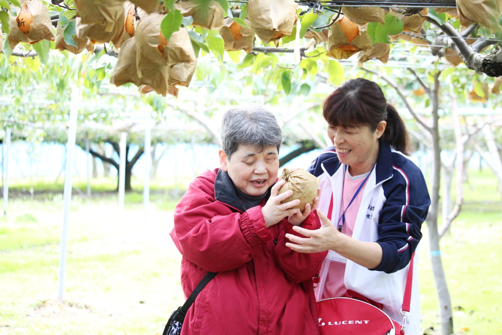 梨を手にする利用者